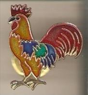 PIN DE UN GALLO  (GALLO-COQ) - Animales