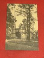 SCHELLE  -  Het Kasteel Laerhof - Ingang  -  1925 - Schelle