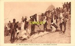 Tchad,  r�gion de Bangor, au Logone, une chasse heureuse, crocodiles, oiseaux...