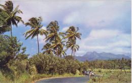 MARTINIQUE, LES PITONS DU CARBET, Couleur - Martinique