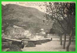 - MONACO - Les Canons De La Terrasse Du Palais (recto Verso) - Les Terrasses