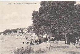23755 FOURAS Dfeux Chenes- 11 Cap Arbre - Fouras-les-Bains