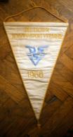 SWIMMING - DEUTSCHER SCHWIMMSPORT - VERBAND 1966.  Embroidered FLAG / Pennant - Swimming