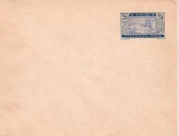 MAURITANIE : ENTIER POSTAL  . 1917 . ACEP . ENV N°5 . TYPE CARAVANE . TB . - Mauritanie (1906-1944)