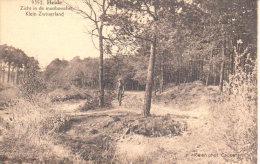 Heide -  Heelsum -Zicht In Demastbosschei  - Klein  Zwisterland  - - Linter