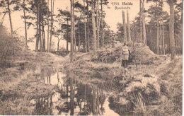 Heide -  Heelsum -Boschzicht  - Klein  Zwisterland  - - Linter