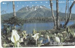 JAPAN - Landscape, NTT Telecard 105 Units(251-319), Used - Landschappen
