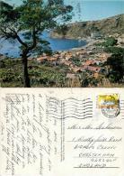 Machico, Madeira, Portugal Postcard Posted 1993 Stamp - Madeira