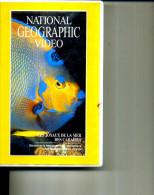 NATIONAL GEOGRAPHIC VIDEO JOYAUX DE LA MER DES CARAIBES - Travel