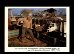 28 - MONTIGNY-LE-CHARTIF - Agriculture - Vache - Ensilage - 1990 - France