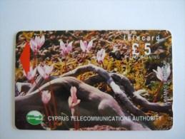 Cyprus Chypre 21CYPB Akamas Forest Plantes Fleurs Cyclames £ 5 Used - Cyprus