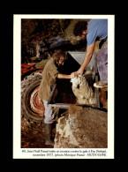 009 - ERP - Mouton Traité Contre La Gale - Agriculture - 1977 - France