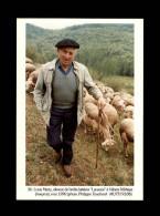 12 - VABRES - Eleveur De Brebis - 1990 - Berger - Vabres