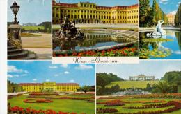 BF13572 Schonbrunn Wien  Austria  Front/back Image - Château De Schönbrunn