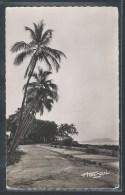 - CPSM GUINEE - Conakry, La Corniche - Guinea