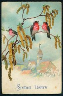 Sretan Uskrs! - Birds - Amag 2815  ------- Postcard Traveled - Pâques