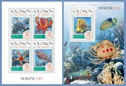 slm14203ab Solomon Is. 2014 Marine life Fish s/s