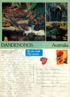 Dandenong Ranges, Victoria, Australia Postcard Used Posted To UK 1997 Nice Stamp #1 - Australia