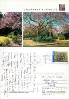 Jacaranda Tree, Australia Postcard Used Posted To UK 2007 Nice Stamp #2 - Other