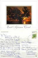 Coast Tree, Kenya Postcard Posted 2000s Stamp - Kenya