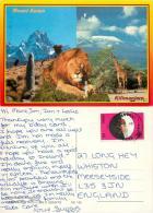 Kilimanjaro, Kenya Postcard Posted 1998 Stamp - Kenya