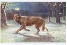 TUCK'S POSTCARD 1910s - WILD ANIMALS - WOLF - N. 3210 - Tuck, Raphael