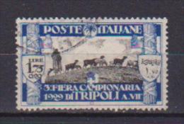COLONIE ITALIANE 1929 LIBIA III FIERA DI TRIPOLI SASS. 84 USATO VF - Libia