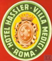 Voyo HOTEL HASSLER VILLA MEDICI Roma Italy Hotel Label 1960s Vintage - Etiquettes D'hotels