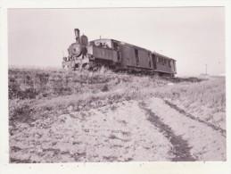 CHEMINS DE FER - TRAINS - CPM - TRAIN POUR COIN QUITTANT SAN JULIAN - - Trains
