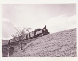 CHEMINS DE FER - TRAINS - CPM - TRAIN-MIXTE POUR COIN PRES D'ALHAURIN EL GRANDE - 16.04.1961 - - Trains