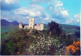 Château De PUIVERT Cour D'amour Des Troubadours - Cpsm Non écrite éditions Loubatières N° 11/13 Correcte - Other Municipalities