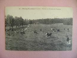 CP PERRAY VAUCLUSE  N°69 PRAIRIES DU DOMAINE DE VAUCLUSE  - ECRITE EN 1917 - Non Classés