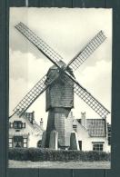 WENDUINE  : De Molen , Gelopen Postkaart 1963  (GA12122) - Wenduine