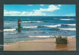 WENDUINE : Zee,  Niet Gelopen Postkaart  (GA12167) - Wenduine