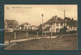 WESTENDE : Avenue Des Dunes,  Gelopen Postkaart 1931 (GA12172) - Westende
