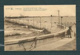 ZEEBRUGGE : Algemeen Gezicht,  Gelopen Postkaart  (GA12190) - Zeebrugge