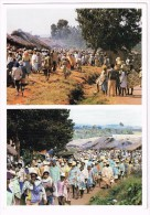 M2637 Madagascar - Camp Robin - Nice Stamps Timbres Francobolli / Viaggiata 1998 - Madagascar