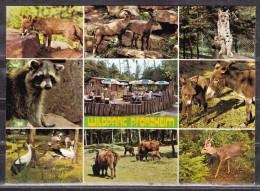 Wildpark Pforzheim, 9 Ansichten, Ungebraucht, Nicht Gelaufen (17249) - Animaux & Faune