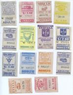 14 BILLETES DE AUTOBUS DEL PERU (Ref: 2+Tc) - Billetes De Transporte