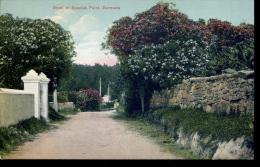 Bermuda - Road At Spanish Point - Bermuda