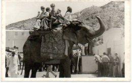 Fotokaart Photo Carte Olifant Elefant Elephant India ? - Éléphants