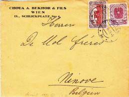Autriche - Devant De Lettre De 1921 ° - Oblitération Vienne - Valeur Lettre Complète = 20 Euros - Cartas