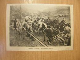 Greek -Macedonian Border - Bulgarians And Germans At The Border  -  WWI -grande Guerre 1916-18 - Military -  Print   W25 - Militaria