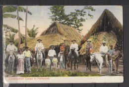 Costa Rica - Construction Camps In Parismina - Colorisée - Costa Rica