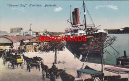 Bermudes Bermuda Steamer Day Hamilton éditeur Phoenix Drug Hamilton  Bateau Bermudian - Bermudes