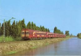 Nº 78 POSTAL DE ESPAÑA DE UN ELECTROTREN 444 EN CAMP-REDO (TREN-TRAIN-ZUG) AMICS DEL FERROCARRIL - Trenes