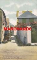 Bermudes Bermuda The Novel Flower Garden éditeur Phoenix Drug Hamilton - Bermudes