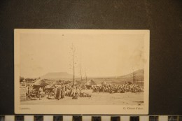 CP, Afrique, Lesotho, Lessouto Cloture D'Aloes N°13 Edition Depot De Livres Morija - Lesotho