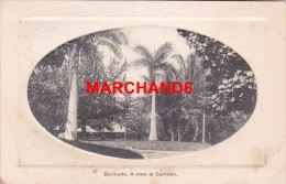Bermudes Bermuda A View At Camden éditeur J H Bradley Hamilton - Bermudes