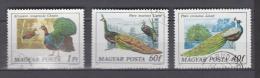 Hongrie YV 2550/2 O 1977 Paons - Paons